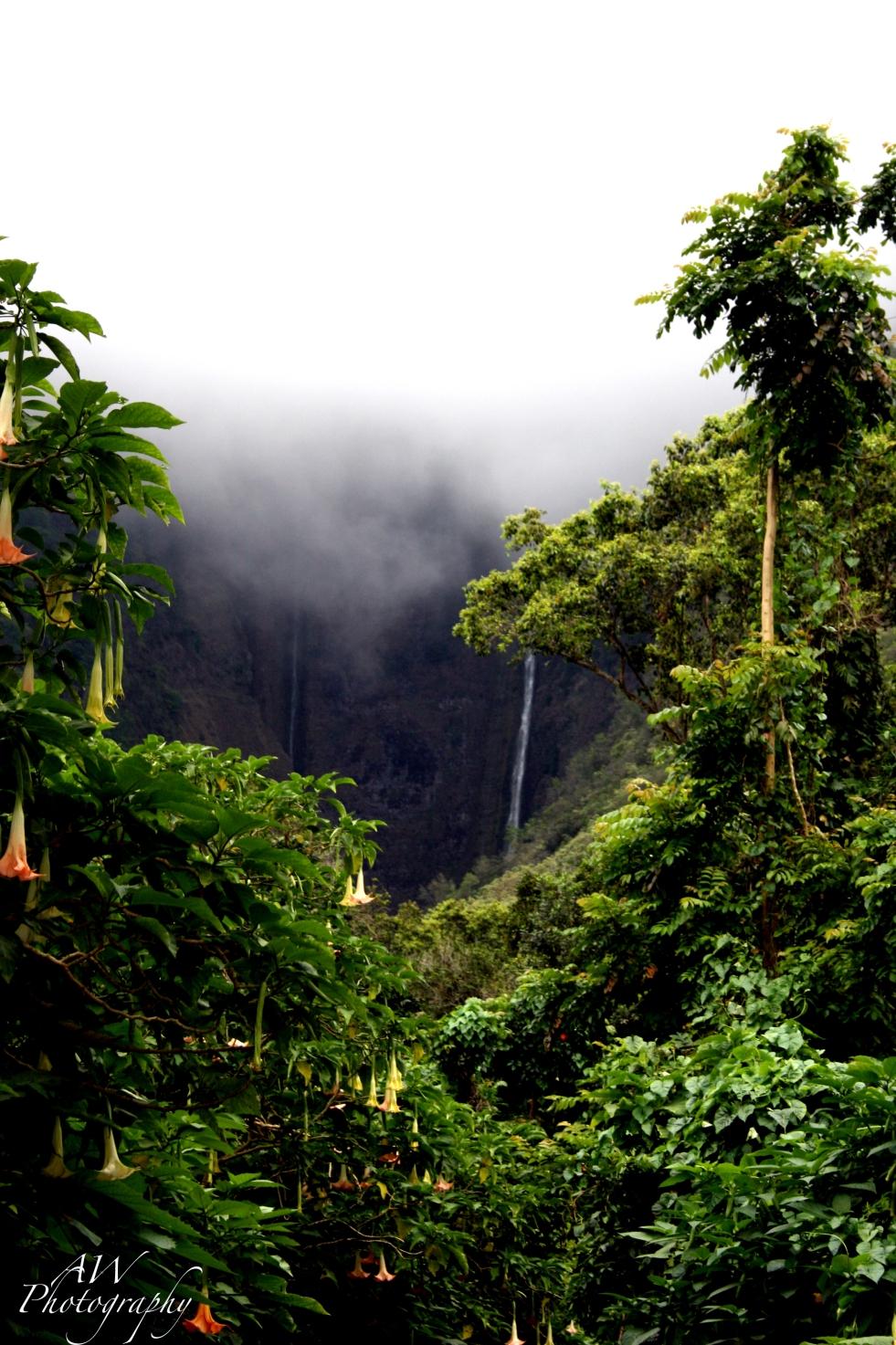 waterfall1far